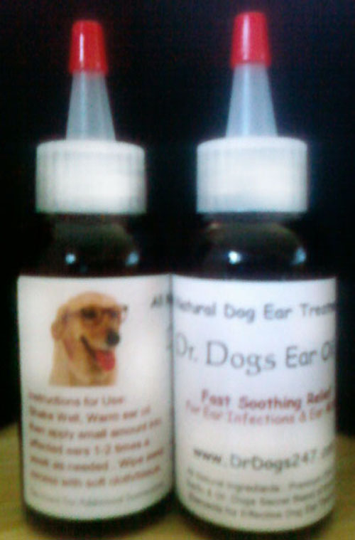 Dog Ear Infection Treatment & Ear Mites Treatment